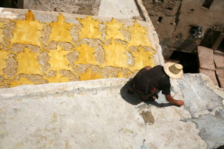 dyed sheepskins laid out to dry